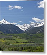 Mountains Co Grouse - New York 2 Metal Print