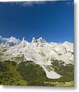 Mountains In The Alps Metal Print