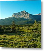 Mountains Of Many Glacier Metal Print