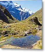 Mountains Of New Zealand Metal Print
