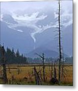 Mountains To Meadows - Glaciers To Ponds Metal Print