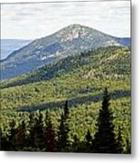 Mountian Draw Metal Print