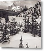 Mountt Sarbach And The North Metal Print