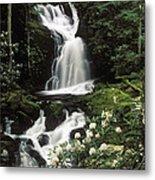 Mouse Creek Falls - Fs000675 Metal Print