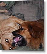 Mouth To Mouth Metal Print