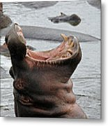 Mouth Wide Open Metal Print