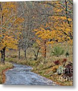 Moving On Down The Road Metal Print