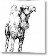 Mr Camel To You Metal Print