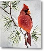 Mr Cardinal Metal Print by Bobbi Price