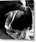 Mr. Flipper Whisker Itch Metal Print by John Grace