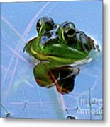 Mr. Frog Metal Print