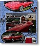 Mr. Sox Corvette Metal Print