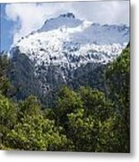 Mt. Aspiring National Park Peaks Metal Print