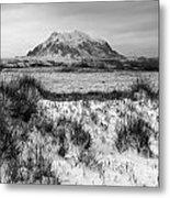 Mt Illimani In Monochrome Metal Print