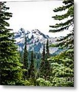 Mt. Rainier Framed Metal Print