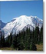 Mt. Rainier In August Metal Print
