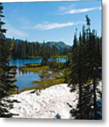 Mt. Rainier Wilderness Metal Print