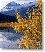 1m3626-mt. Saskatchewan In Fall Metal Print