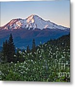 Mt. Shasta At Dawn Metal Print