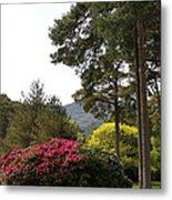 Muckross Garden In Spring Metal Print