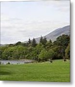 Muckross Lake And Garden Metal Print