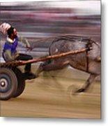 Mule Cart Race Metal Print