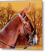 Mule Days - Westmoreland Tn  9-28-13 Metal Print