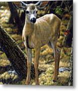 Mule Deer Fawn - Monarch Moment Metal Print by Crista Forest