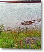 Mulholland Point Lighthouse On  Campobello Island-nb Metal Print