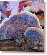 Multicolor Mushroom Metal Print