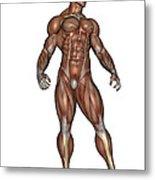 Muscular Man Standing Metal Print