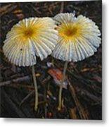 Mushroom Flowers Metal Print