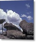 Mushroom Rocks Copper Canyon Mexico Metal Print