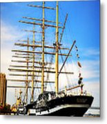 Mushulu At Penns Landing Metal Print