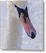 Mute Swan On Ice Metal Print