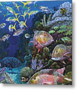 Mutton Reef Re002 Metal Print