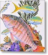 Mutton Snapper Reef Metal Print