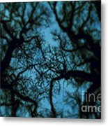 My Blue Dark Forest Metal Print