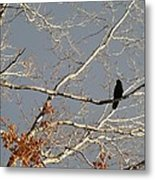 My Branch Metal Print