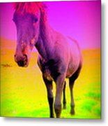 My Dream Comes Through And It's A Little Friend  Metal Print