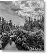 My Favorite Maine Image Metal Print