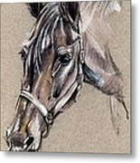 My Horse Portrait Drawing Metal Print
