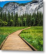 My Kind Of Trail Metal Print