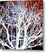 My Neighbor's Tree II Metal Print