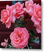 My Rose Garden Metal Print by Victoria Sheldon
