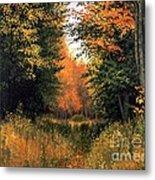 My Secret Autumn Place Metal Print by Michael Swanson