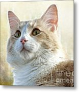 My Squishy Metal Print
