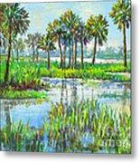 Myakka Lake With Palms Metal Print