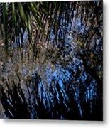 Myakka River State Park Reflections Sarasota Florida Usa Metal Print