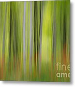 Mysterious Forest 2 Metal Print